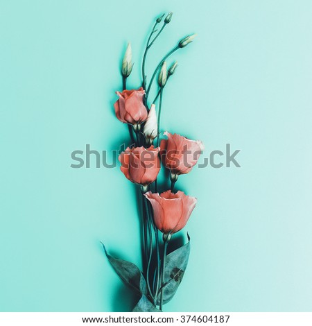 Romantic Flowers on blue background. Minimal style
