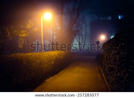 Romantic foggy night walk in a park with street lights (diffused, toned).