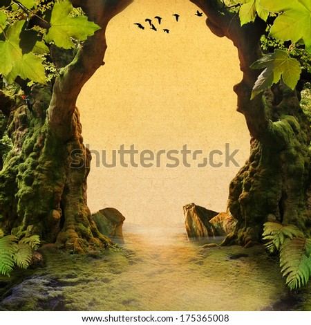 romantic forest view - stock photo