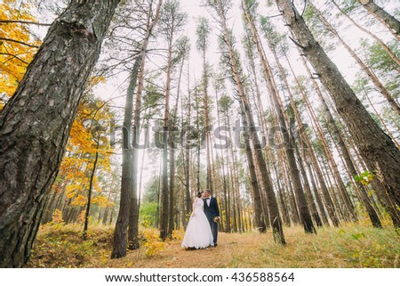 Romantic newlyweds kissing in the autumn pine forest