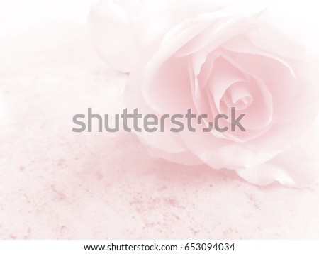 Romantic soft pink flower background