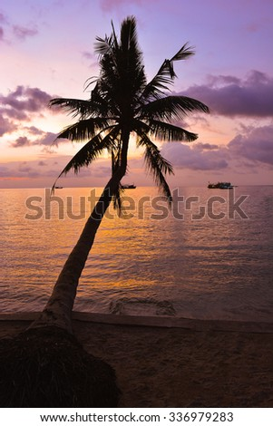 romantic sunset and coconut tree on the beach/yellow and purple sky