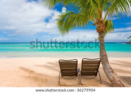 romantic tropical beach with palm tree and two chairs on sand