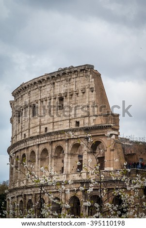 Rome, Italy - 4 April 2015:  View of tourist visiting the Roman Colosseum with spring blossom in  the foreground.