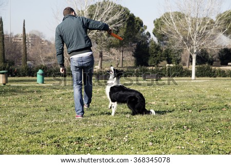 ROME, ITALY - JANUARY 25 2016: Young man playing with his Border Collie dog in the park with a frisbee, Rome Italy