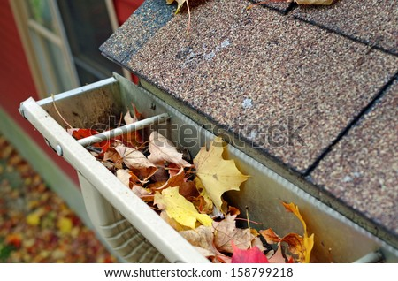 Roof Gutter and downspout filled with autumn leaves - stock photo