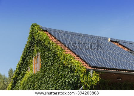 roof with ivy and solar cells - stock photo