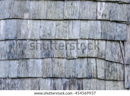 roofing in the village