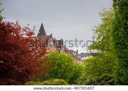 Rooftops through the trees