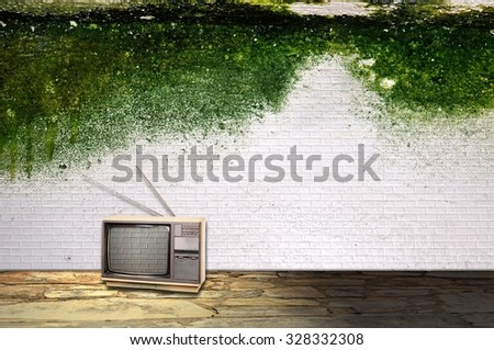 Room interior with vintage television and mossy wall - stock photo