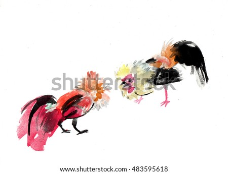Rooster fight illustration watercolor  Chinese new year 2017