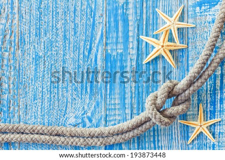 Rope and sea shells - stock photo