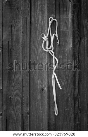 Rope horse bridal hanging on the side of a barn, in black and white.