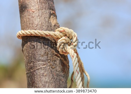 rope tied wood in nature