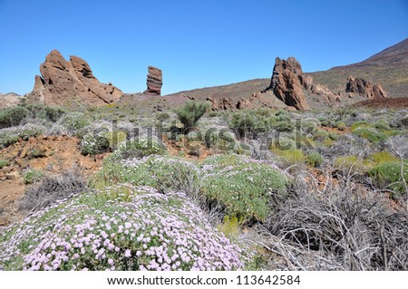 Roque Cinchado, Teide National Park, Tenerife, Canary islands, Spain - stock photo