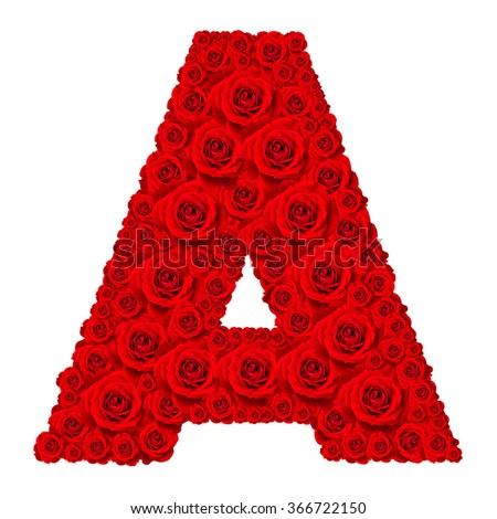 Rose alphabet set - Alphabet capital letter A made from red rose blossoms isolated on white background - stock photo