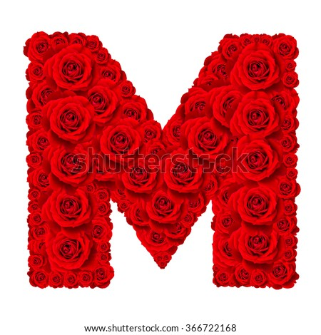 Rose alphabet set - Alphabet capital letter M made from red rose blossoms isolated on white background - stock photo