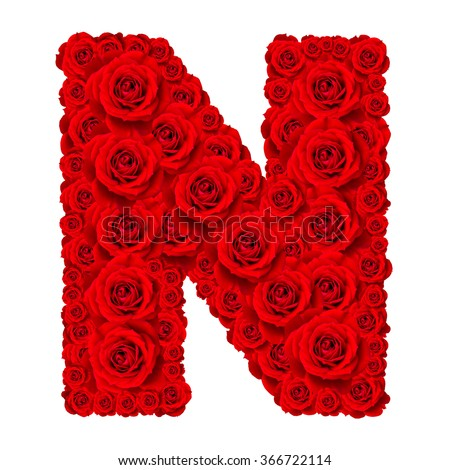 Rose alphabet set - Alphabet capital letter N made from red rose blossoms isolated on white background - stock photo