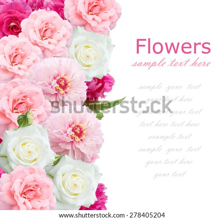 Rose and peony background isolated on white with sample text