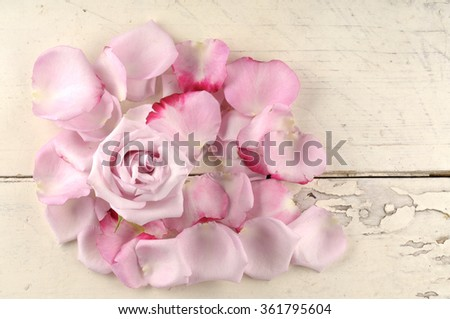 Rose and petals over wooden background. Valentine day greeting card.