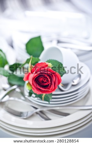 Rose and the big pile of dishes - stock photo