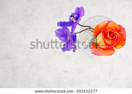 Rose and violet flowers in crystal glass with copy space on grange background