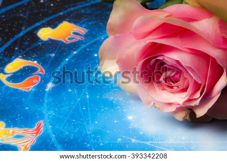 rose and zodiac chart - stock photo