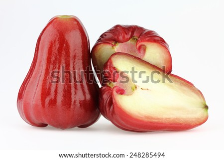 Rose apple on the white background - stock photo