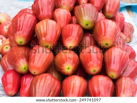 Rose-apple, tropical fruit displayed at Vinh Long fruit market, Mekong delta. The majority of Vietnam's fruits come from the many orchards of the Mekong Delta