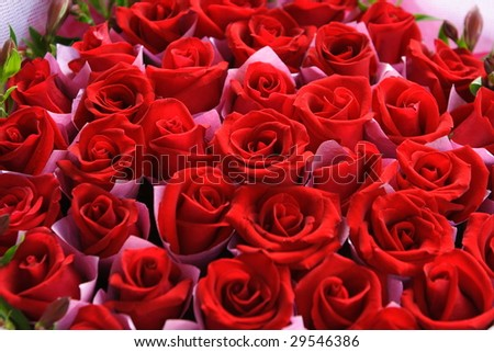Rose bouquet of flowers - stock photo