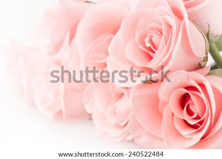 rose flower bouquet vintage background - stock photo