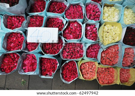 Rose Flower Group Market - stock photo