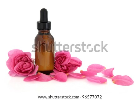 Rose flower petals and buds with aromatherapy essential oil glass bottle isolated over white background. Rosa rugosa. - stock photo