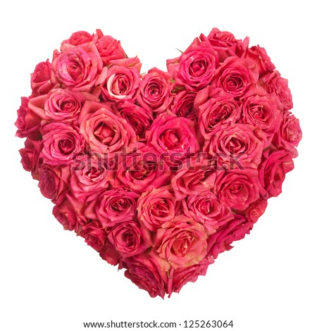 Rose Flowers Heart Over White. Valentine. Love - stock photo