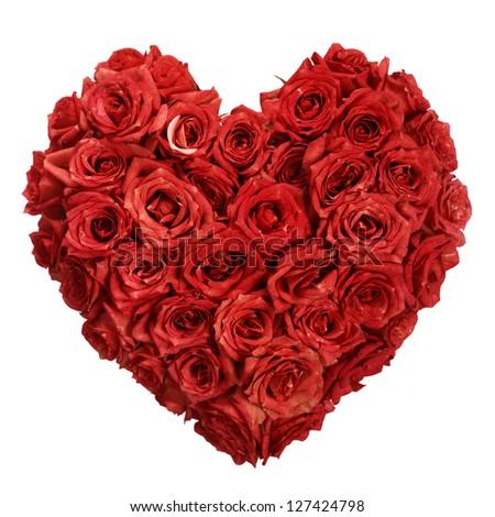 Rose Flowers Heart Over White. Valentine. Love - stock photo