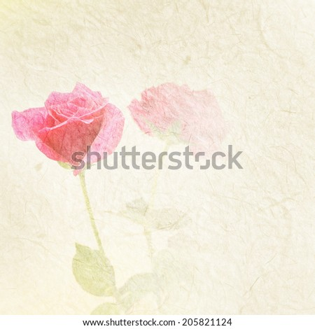 Rose flowers on mulberry paper texture style - stock photo