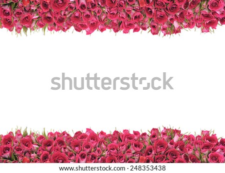 Rose frame - stock photo