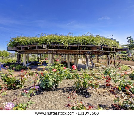 Rose garden in San Diego architectural building structure. - stock photo