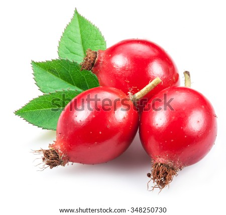 Rose-hips with leaf isolated on a white background. - stock photo