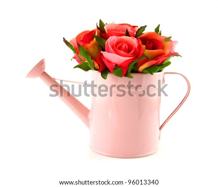 Rose in watering can isolated on white - stock photo
