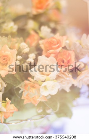 Rose is a symbol of love and Valentine's Day with the pastel colors and focus blurred background