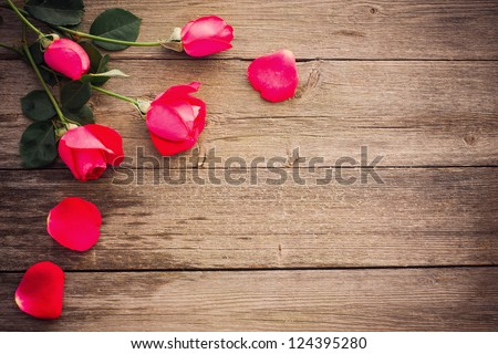 rose on wooden background - stock photo