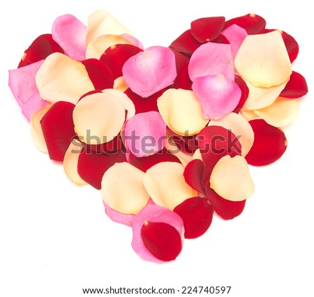 rose petal heart isolated on white background