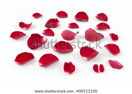 Rose petals and leaves isolated on white background - stock photo