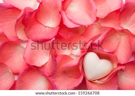 Rose petals background. - stock photo
