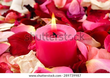 Rose Petals background with red candle