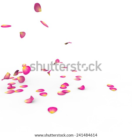 Rose petals fall to the floor. Isolated background - stock photo