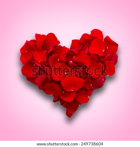 Rose petals in heart shape on a beautiful background. Valentine greeting card, wedding. Top view of the square. - stock photo