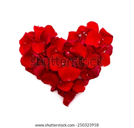 Rose petals in heart shape. Valentine greeting card, wedding. Top view of the square. - stock photo