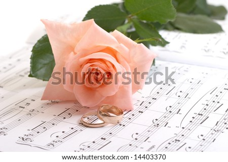 Rose, rings and notes on a white background - stock photo